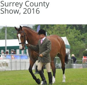 Localrider-Surrey-County-Show-2016