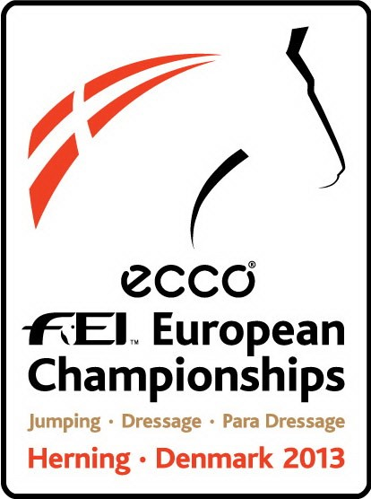 FEI Herning logo