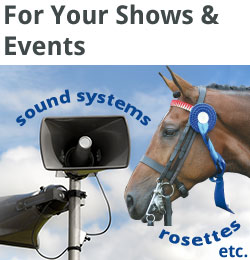 services-squares-shows-events