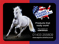 Equine America Banner
