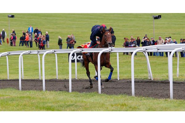 Gallops Newmarket Open Day