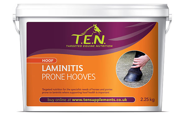 Hoof_Laminitis Prone Hooves
