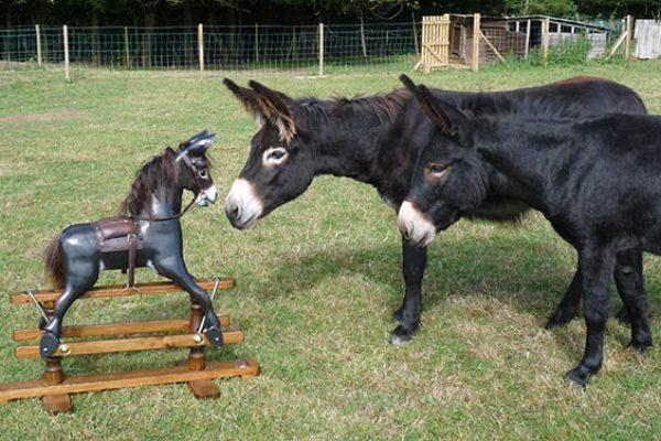 Rocking-donkey