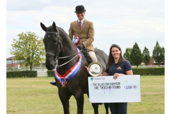 Tiny Tim wins The Blue Chip and IDHS £2000 Championship