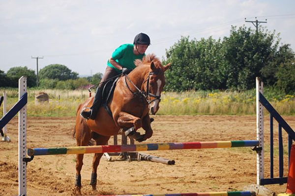 Monaco Prince (Monny) Jumping.after using Mollichaff Condition