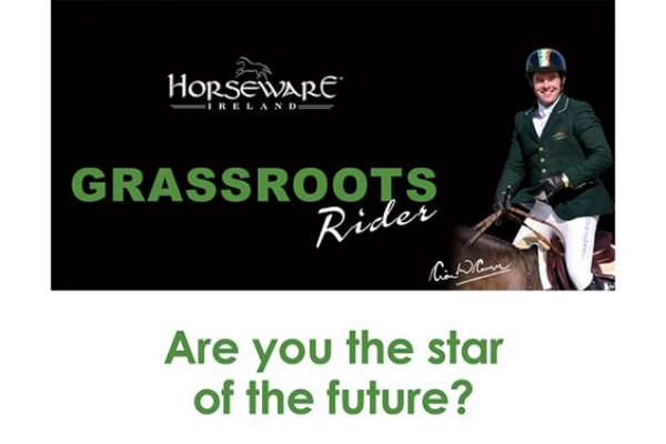 Horseware Grassroots Start of the future