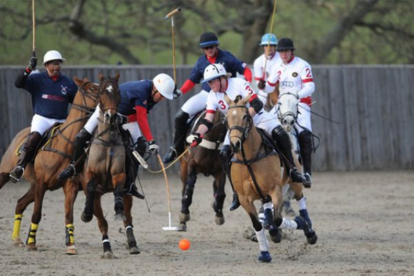 Eng-v-USA-at-the-2012-Test-Match-at-Hickstead-(c)-imagesofpolo.com