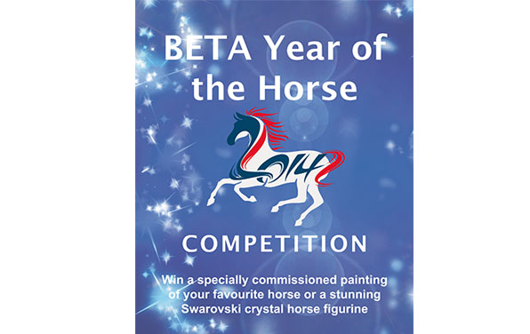 BETA-Year-of-the-Horse-Poster