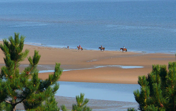Horse-Riding-on-a-Normandy-Beach