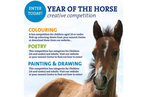 Year-of-the-Horse-competition