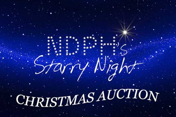 NPDH Starry-Night-Auction
