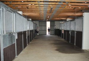 Sussex equine Hospital Stabling