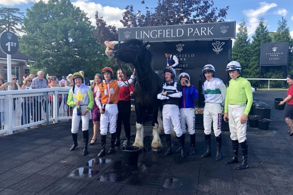 Shire Lingfield Park