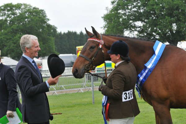 Classictop Up & At It Cuddy winner South of England Show