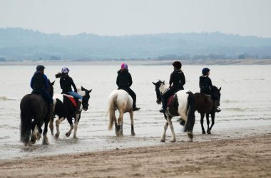 Camber Sands Beach Riding