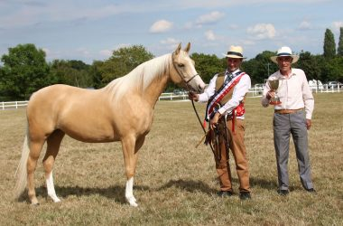 British Palomino Society